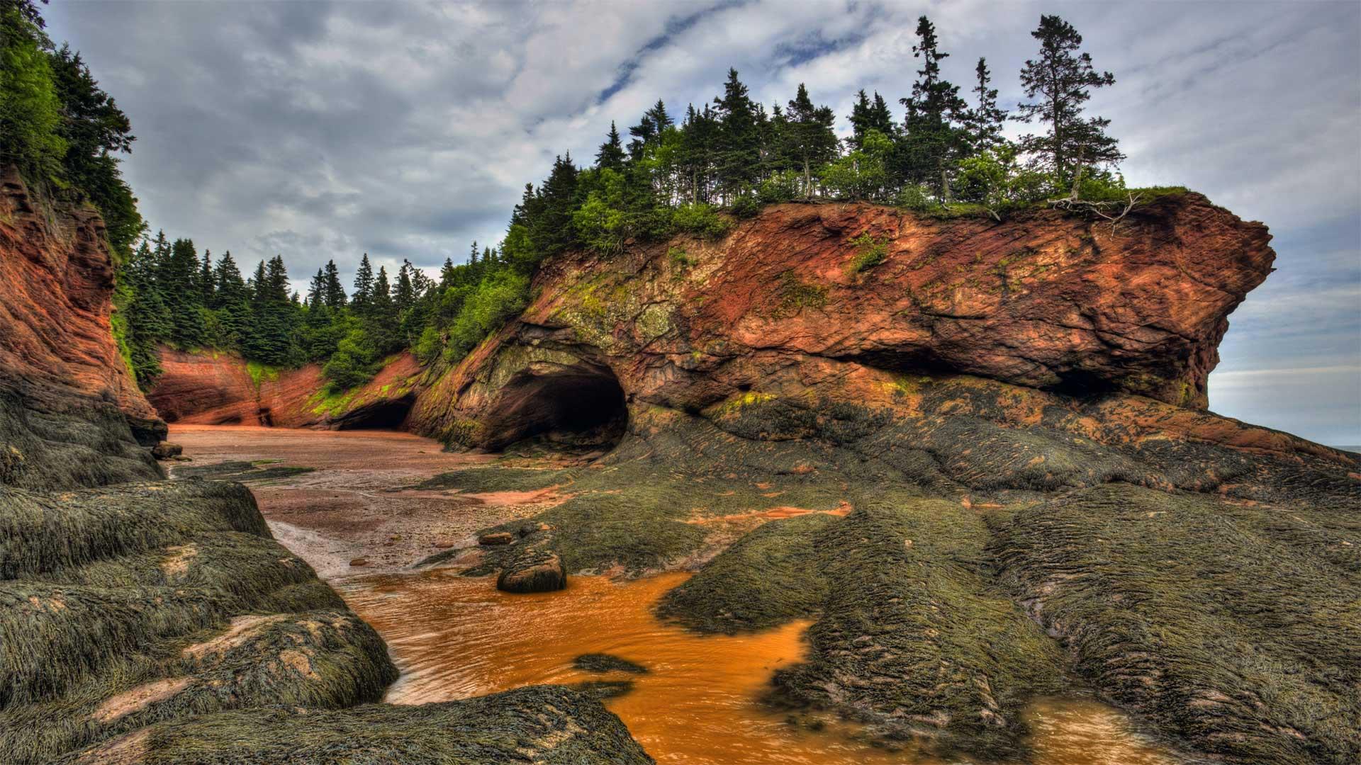 芬迪湾低潮时的洞穴及海岸地貌 ,加拿大新不伦瑞克 (© Jamie Roach/Shutterstock)