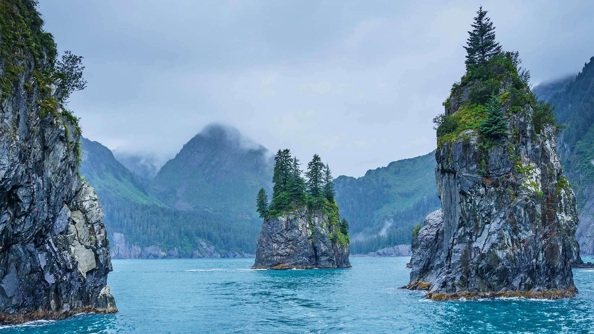 基奈峡湾国家公园的尖顶湾,阿拉斯加 (© Sekar B/Shutterstock)