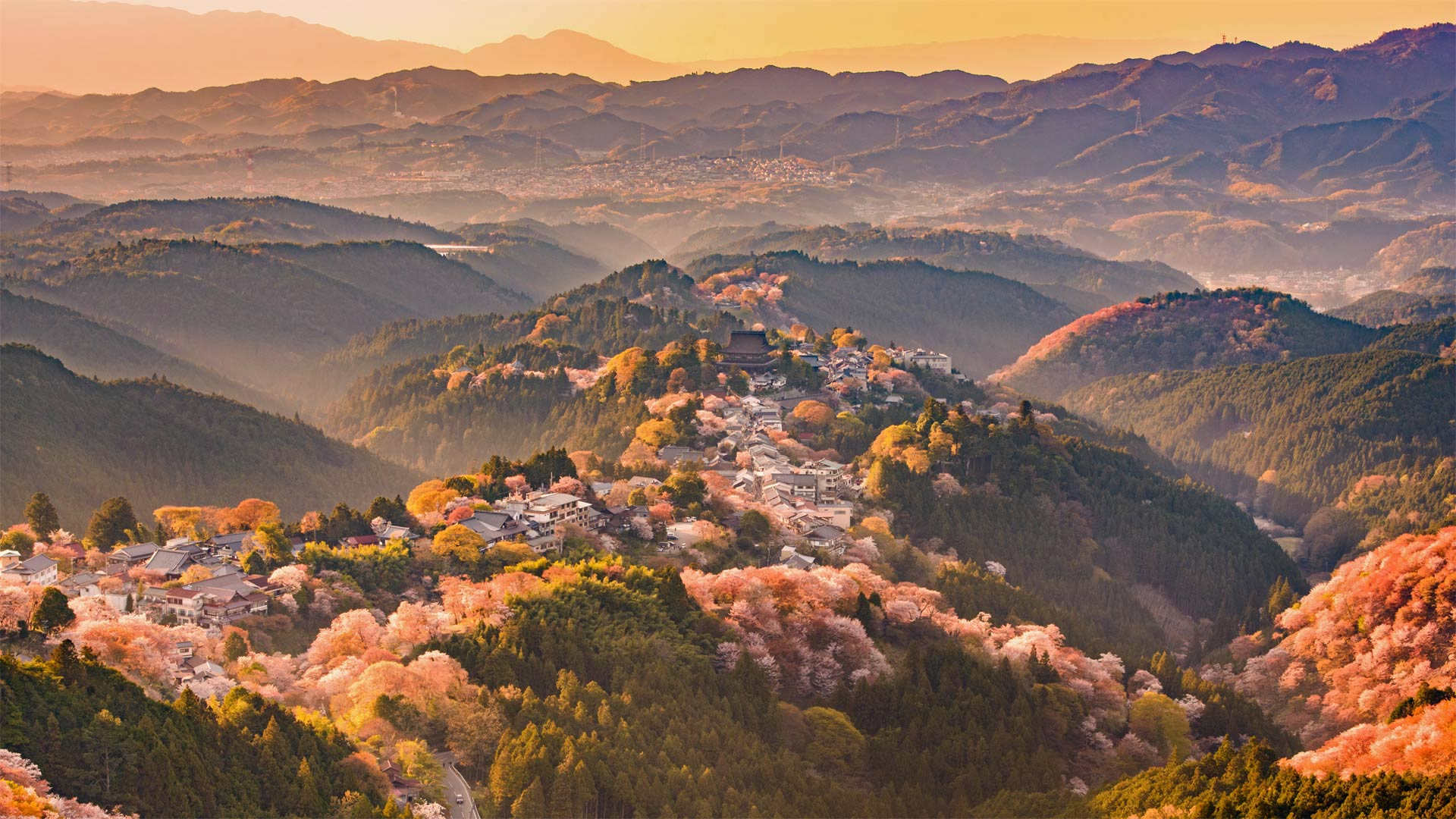吉野山,日本奈良 (© Sean Pavone/iStock/Getty Images Plus)