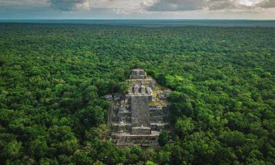 被丛林包围着的玛雅古城卡拉克穆尔遗址,墨西哥坎佩切