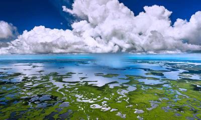 大沼泽地国家公园鸟瞰图