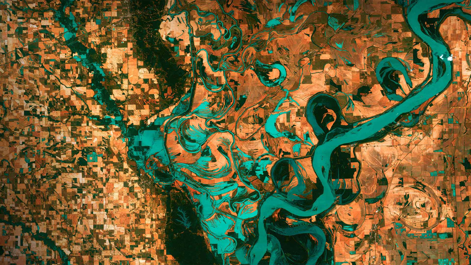 位于阿肯色州和密西西比州交界处的密西西比河 (© NASA)