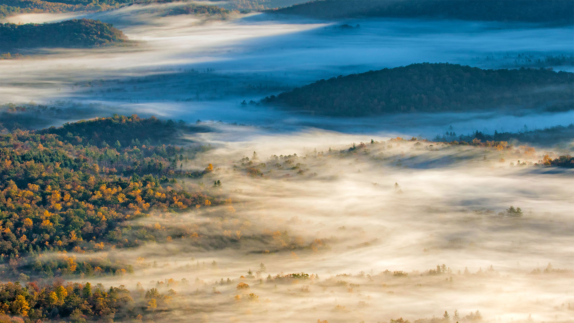 Pisgah National Forest near Brevard, North Carolina (© Adam Jones/Danita Delimont)