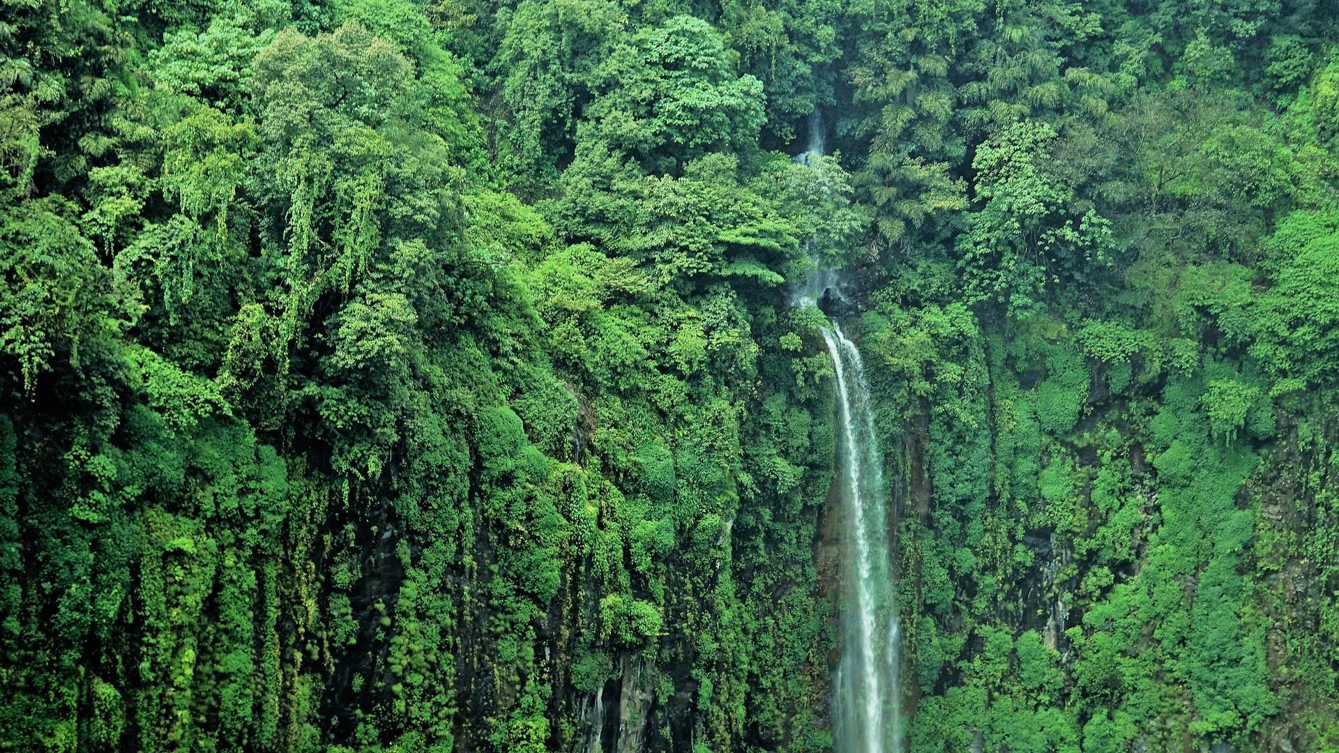 托塞加尔瀑布,印度马哈拉施特拉邦
