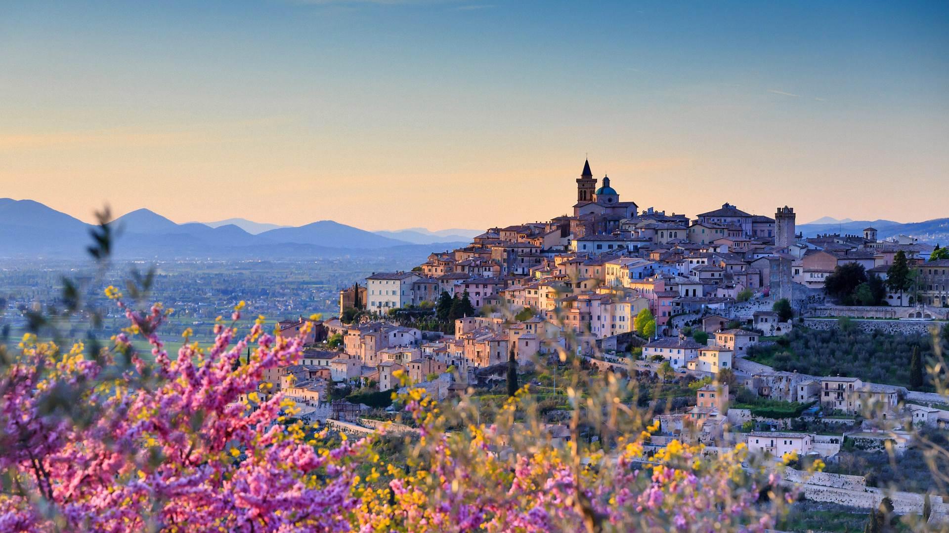 俯瞰着特雷维的扁桃花,意大利佩鲁贾