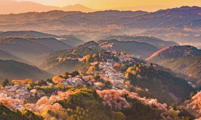 2021.04.11 - 吉野山,日本奈良